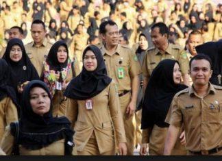 formasi CPNS Kabupaten Garut 2018
